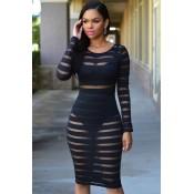 Black Sheer Stripes Bodycon Midi Dress