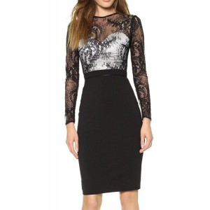 Sexy Long Sleeve Round Neck Spliced Bodycon See-Through Dress For Women black