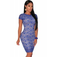 Blue Lace Nude Illusion Fringe Trim Dress