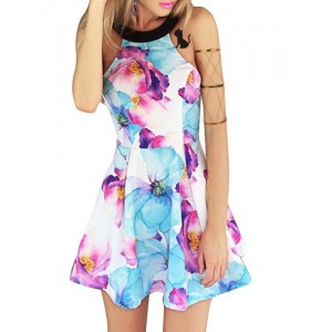 Sexy Round Collar Sleeveless Floral Print Dress For Women