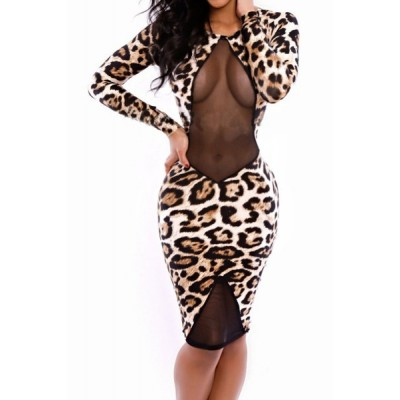 Sexy Scoop Collar Long Sleeve See-Through Leopard Print Dress For Women
