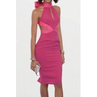 Sexy Turtleneck Sleeveless Backless Bowknot Embellished Dress For Women rose
