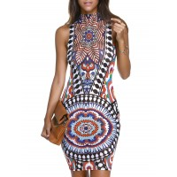 Stylish Mock Neck Floral Print Bodycon Dress For Women