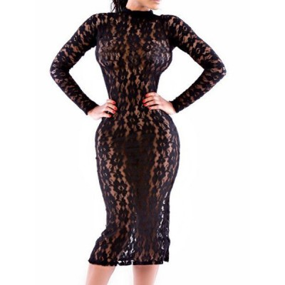 Sexy Lace Stand-Up Collar Long Sleeve Solid Color See-Through Dress For Women black
