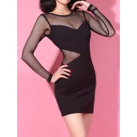 Alluring Round Neck Long Sleeve Bodycon See-Through Dress For Women black