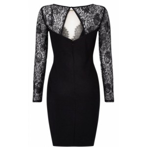 Lace Sequin Embellished Bodycon Party Dress