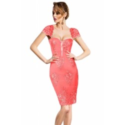 Pink Embroidered Cap Sleeves Bodycon Party Dress Green