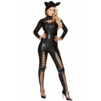 Sexy Frisky Cat Costume