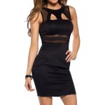 Sexy Women's Round Neck Hollow Out Mesh Splicing Dress Black