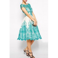 Elegant Jewel Neck Short Sleeve Hollow Out Spliced Lace Dress For Women