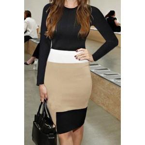 Elegant Women's Round Neck Color Block Long Sleeve Bodycon Dress black