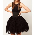 Ladylike Scoop Collar Openwork Lace Sleeveless Waisted Slimming Ball Gown Dress black