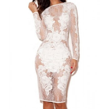 Sexy Round Collar Long Sleeve Solid Color See-Through Lace Dress For Women black white