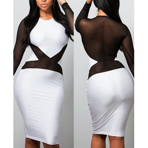 Sexy Round Neck Long Sleeve See-Through Color Block Dress For Women black white