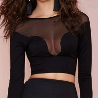 Sexy Women's Jewel Neck Long Sleeve Mesh Splicing Crop Top black