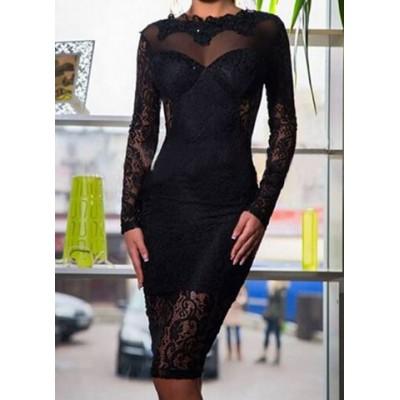 Stylish Women's Jewel Neck Long Sleeve Backless Black Lace Dress