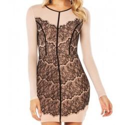 Elegant Women's Jewel Neck Long Sleeve Lace Embellished Dress fall pink
