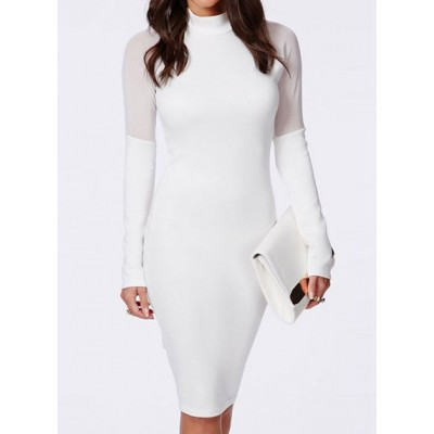 Sexy Turtle Neck Long Sleeve See-Through Solid Color Dress For Women black white