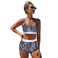 Leopard Two-piece High Waisted Bikini Multi