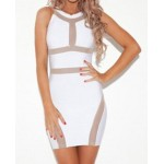 Sexy Round Collar Sleeveless Spliced Hollow Out Bodycon Dress For Women