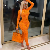 Echoine Sexy Hollow Out Fishnet Jumpsuit Women Long Sleeve See Through Zipper Bodycon Skinny Rompers Clubwear Outfits Party