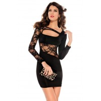 Alluring Hook Flower Lace Splicing Translucent Cut Out Long Sleeves Bodycon Dress For Women black