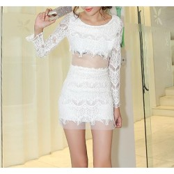 Lace Embroidered Stitching Openwork Translucent Dropped-Waist Packet Buttock Lace Solid Color Dress For Women